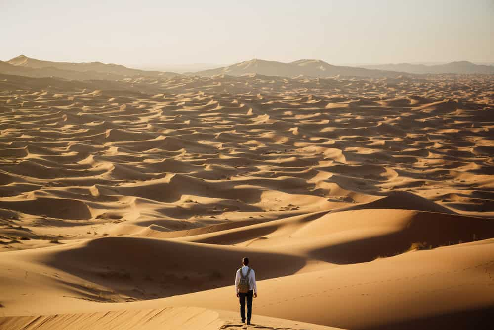 Plan a Trip to the Sahara Desert: Day and Night