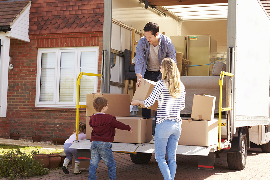 Amazing Removal Services by Steve Lavin Removals